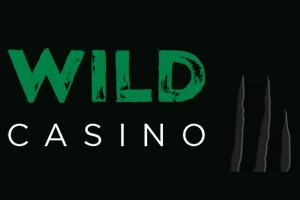 логотип wild casino