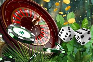 изображение функции дикого казино