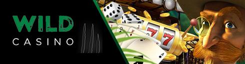 логотип заголовка wild casino